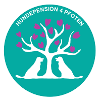 Hundepension 4 Pfoten