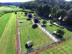 Luftaufnahme.jpg
